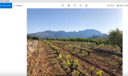 Encuentro Virtual – bodegas Gutiérrez de la Vega y Costers del Priorat